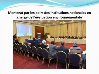 mentorat_par_les_pairs_des_institutions_nationales__400